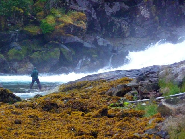 aaron-fishing-falls (89k image)