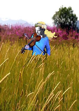 grass-fiddler-small (56k image)