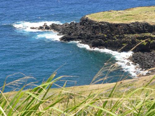 hawaii-landscape (93k image)