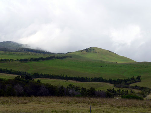 hawaiian-pasture-lands (42k image)