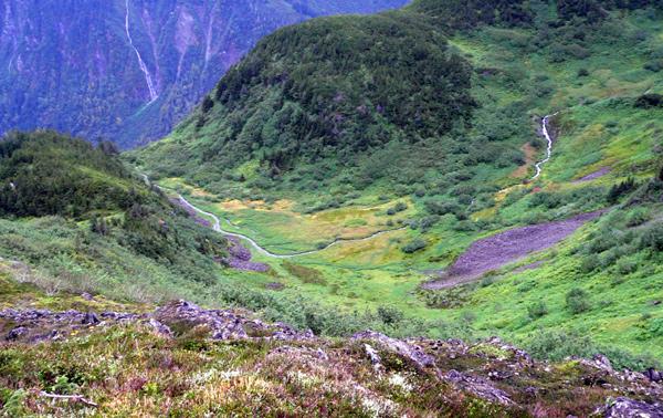 mount-roberts-juneau-hike-3 (201k image)