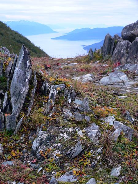 mount-roberts-juneau-hike-9 (213k image)