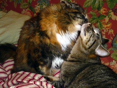 osiris-lemoni-kiss (53k image)