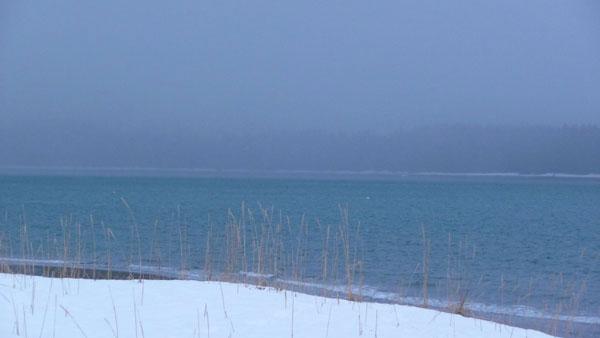 snowy-beach-yellow-grass-bl (20k image)