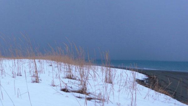 snowy-beach-yellow-grass1 (30k image)